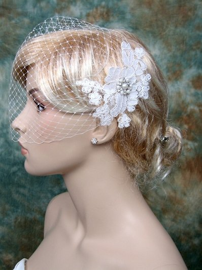 Ivory blusher birdcage veil with alencon lace BVF009